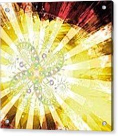 Cosmic Solar Flower Fern Flare 2 Acrylic Print by Shawn Dall