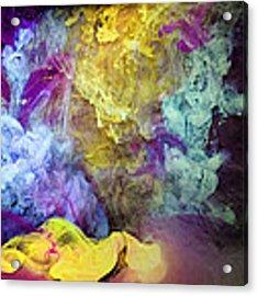 A Beautiful Mess Acrylic Print