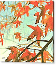 Autumn Dance Acrylic Print by HweeYen Ong