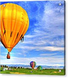 Balloonfest 9 Acrylic Print by Scott Mahon