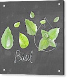 Basil Acrylic Print