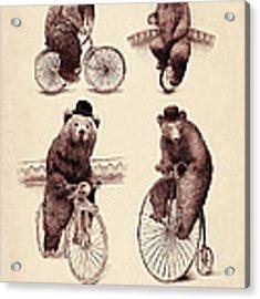 Bears On Bicycles Acrylic Print
