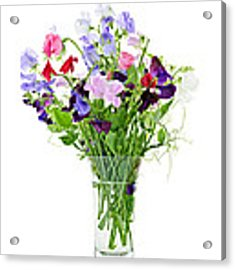 Bouquet Of Sweet Pea Flowers Acrylic Print