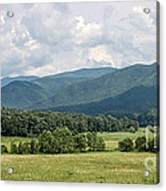 Cades Cove In Summer Acrylic Print by Todd Blanchard