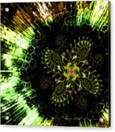 Cosmic Solar Flower Fern Flare Acrylic Print by Shawn Dall