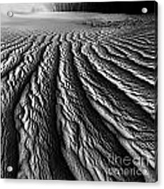 Desert Dreaming 2 Of 3 Acrylic Print by Julian Cook