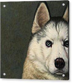 Dog-nature 9 Acrylic Print