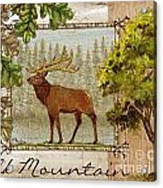 Elk Mountain Acrylic Print by Paul Brent