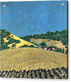 Farm At Lona Gulch Acrylic Print by John Wyckoff