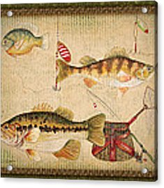 Fish Trio-a-greenborder Acrylic Print