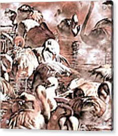 Flamingo Dreams Acrylic Print by Donna Proctor