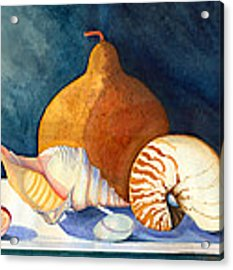 Gourd And Shells Acrylic Print by Katherine Miller