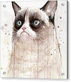 Grumpy Watercolor Cat Acrylic Print by Olga Shvartsur
