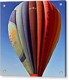 Landing In Field Acrylic Print by Arik Baltinester