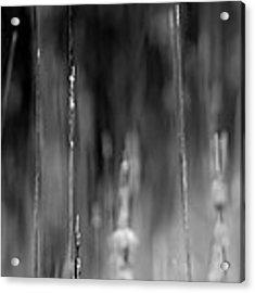 Life's Ripple - Left Acrylic Print by Steven Santamour