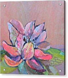 Lotus Iv Acrylic Print by Shadia Derbyshire