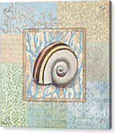Oceanic Shell Collage Iv Acrylic Print