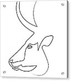 oneline Bull Acrylic Print by Quibe Sarl
