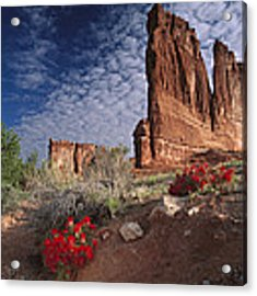 Paintbrush And The Organ Rock Acrylic Print by Tim Fitzharris