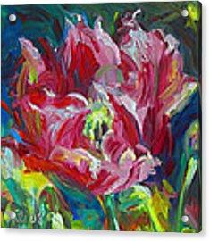 Poppy's Secret  Acrylic Print by Talya Johnson