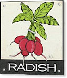 Radish Acrylic Print by Shanni Welsh