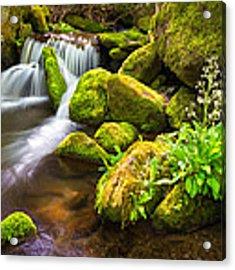 Roaring Fork Great Smoky Mountains National Park Tn Acrylic Print