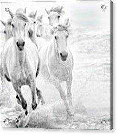 Running In The Sea Acrylic Print