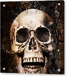 Skull In Earth Acrylic Print