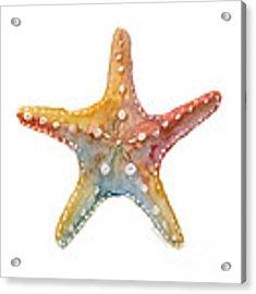 Starfish Acrylic Print