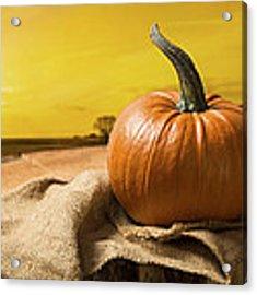 Sunset Pumpkin Acrylic Print