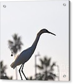 The Art Of Fishing Acrylic Print by Laurie Lundquist
