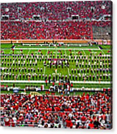 The Going Band From Raiderland Acrylic Print by Mae Wertz