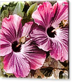Twin Hibiscus Acrylic Print by Donna Proctor
