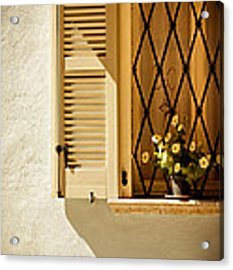 Window With Vase And Petunias Acrylic Print by Silvia Ganora