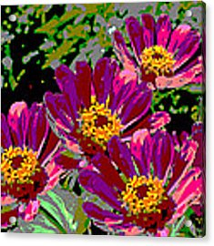 Zinnias II Florida Contemporayary Digital Art Acrylic Print by G Linsenmayer