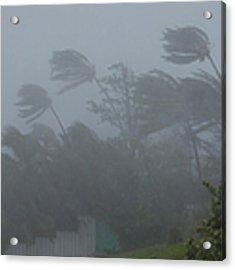 Hurricane Irene Acrylic Print by Jim Edds and Photo Researchers