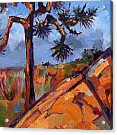 Orange Granite Acrylic Print by Erin Hanson