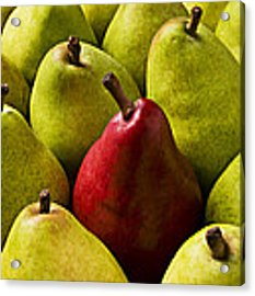 Red And Green Pears  Acrylic Print