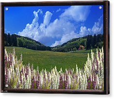 Acrylic Print featuring the photograph  A Beautiful View by Bernd Hau