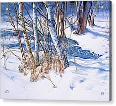A Snowy Knoll Acrylic Print by June Conte  Pryor