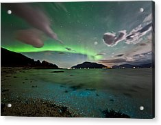 Auroras And Dinoflagellates Acrylic Print