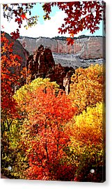 Autumn In Zion Acrylic Print