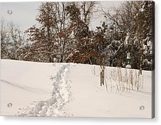 Christmas Snow Trail Acrylic Print