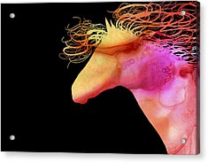Colorful Abstract Wild Horse Orange Yellow And Pink Silhouette Acrylic Print by Michelle Wrighton