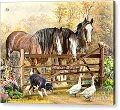 Featherwell Farm Acrylic Print