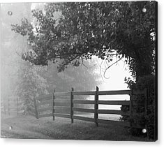 Fog At Dawn Acrylic Print