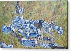 Gaucho Roundup Acrylic Print