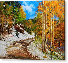 Golden Aspen Trees In Snow Acrylic Print
