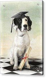 Acrylic Print featuring the digital art  Graduation Day by Trudi Simmonds