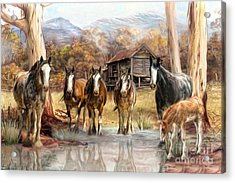 Acrylic Print featuring the digital art  High Country Hideaway by Trudi Simmonds